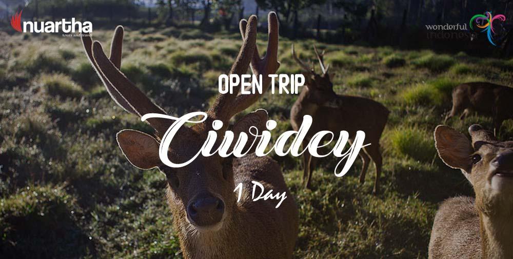 open-trip-ciwidey